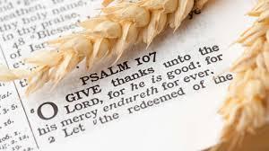 psalms of thanksgiving list sermon oct 9 2016 thanksgiving deut 10 11 17 18a pastor terry defoe jpg