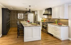 kitchen kitchen cabinet doors pull out kitchen faucets kitchen