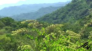 Sierra Madre Occidental Map Adventure Travel Sierra Madre Mountains Mexico Youtube Youtube