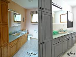 charming ideas paint or stain kitchen cabinets peaceful design