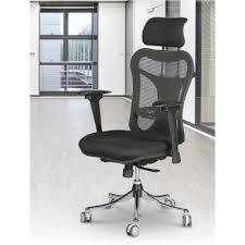 Ergonomic Chair by Ergo Ex Ergonomic Executive Office Chair Mooreco Inc Best