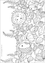 blowfish fish color animal coloring pages color plate