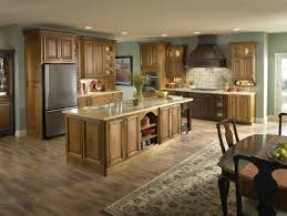 Fancy Kitchen Cabinets by Beautiful Kitchen Cabinets Ideas 2015 Of Color Schemes And Design