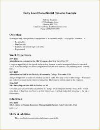 Chief Accountant Resume Sample Resume Templates Entry Level Rn Google Search Accounting Resume