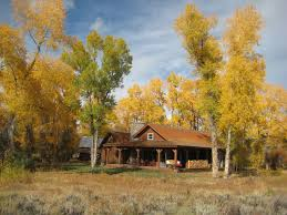 Wam Home Decor by 100 Home Decor New Trends Decor New Leaf Decor Home Decor