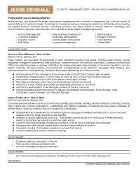 Good Sales Resume Examples  good sales resume  hidden chamber king     Furniture Sales Resume Sample   good sales resume examples