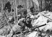 Image result for korean war images