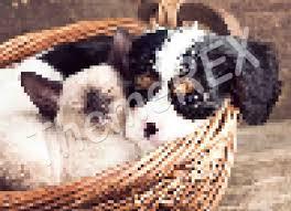 3d slimdog premium hentai 83|Usage Statistics for vvbeetgum.nl - March 2018 - Referrer