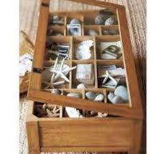 Display Coffee Table 117 Best Seashells Images On Pinterest Shadow Box Coffee Table