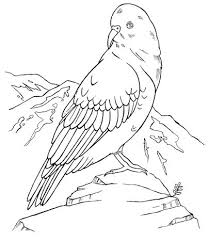 colouring pages zealand 90 celtic coloring pages irish