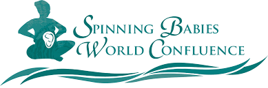 Belly Mapping 2016 Spinning Babies World Confluence Spinning Babies
