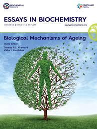 origins of mtdna mutations in ageing essays in biochemistry