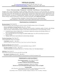 Profile Section Of Resume How To Write A Professional Profile Skills Profile For Resume Good Skills Profile For Resume Skills Profile Resume For Customer     Brefash