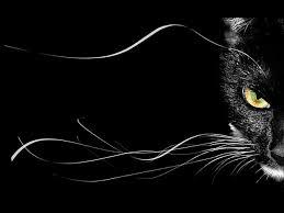 """крепость - """"ДЕНЕЖНОЕ КОЛЕСО""""  в Салоне магии и мистики Елены Руденко Images?q=tbn:ANd9GcTh33N1nltIl3zNZmjUMs1CFfn6R9fK5U2ZXgpwJJY1WWwpV690"""
