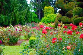 outdoor date idea take a stroll around a beautiful garden