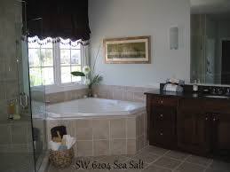 Painting Bathroom by Sea Salt Paint Bathroom Sea Salt Paint In Bathroombest 25 Sea