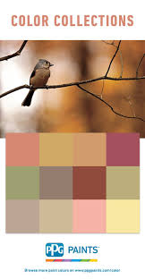 Color Swatches Paint by 58 Best Paint Color Collections And Paint Color Palettes Images On
