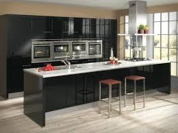 Black Kitchen Designs Photos And Modern Black Kitchen Designs