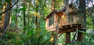 Tiny House Hotel Near Me Treehouse Point
