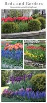 garden rockery ideas best 25 garden bulbs ideas on pinterest bulb flowers spring