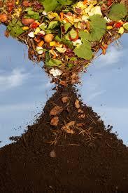 como hacer compost  Ogr  d Online