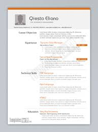 Professional Resume Template       Page Cover Letter Ms Word