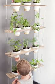 best 25 herb wall ideas on pinterest kitchen herbs indoor