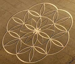 La flor de la vida Images?q=tbn:ANd9GcTj3Sq9nWKazU-glrX0XVzd5UG7UayC7MWlV3yl6Cze0IErDi14