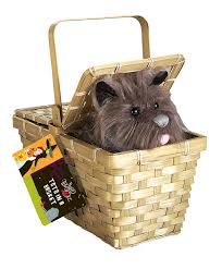 halloween accessories amazon com wizard of oz dorothy u0027s toto in a basket toys u0026 games