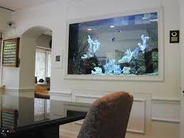 fish tank fish tank design planner designer online betta ideas