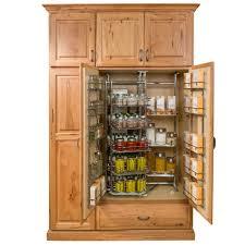 Best Spice Racks For Kitchen Cabinets Cabinets U0026 Drawer Vertical Spice Racks Modern Kitchens Spice