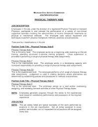 Resume Sample Director by Resume Free Resume Theme Sample Resume Caregiver Portfolio