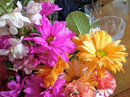 teresa kasner winter flowers