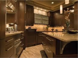 modern kitchen burl maple all wood kitchen cabinets magnificent