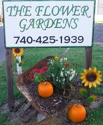 about us the flower gardens barnesville oh