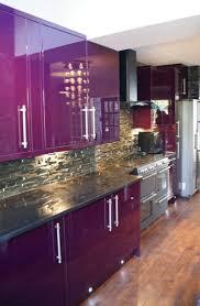 best 25 purple kitchen cabinets ideas on pinterest purple