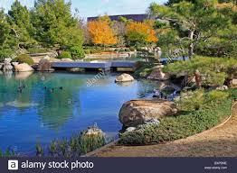 koi pond autumn stock photos u0026 koi pond autumn stock images alamy