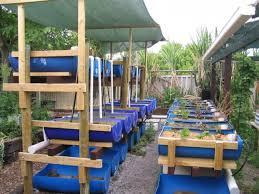 Barrel Aquaponic Systems Backyard AquaponicsBackyard Aquaponics - Backyard aquaponics system design