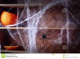 spooky halloween background free spooky halloween spider web background stock photo image 44111075