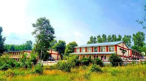 Poonch Medical College
