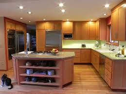 Kitchen Cabinet Decor Ideas kitchen cabinet design ideas pictures options tips u0026 ideas