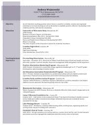 Career Gap In Resume An Essay Towards A Real Character And A Philosophical Language