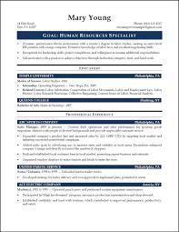 Senior Hr Manager Resume Sample by Finance Manager Resume Summary Contegri Com