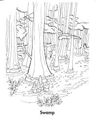 forest habitat coloring pages fun to do pinterest forest