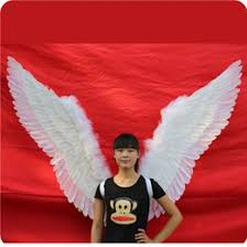 Red Wings Halloween Costume Large Feather Wings Costume Large Feather Wings Costume