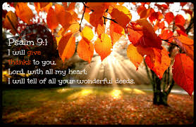 What Is Thanksgiving To You Week 1 U2013 A Month Of Thanksgiving U2013 What Is The Assistant Cook At
