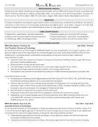 Professional Profile On Resume Digital Marketing Resume Resume For Your Job Application