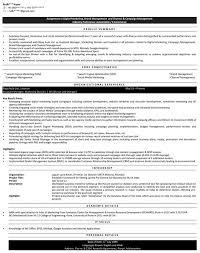 Digital Marketing Resume Samples   Sample Resume for Digital