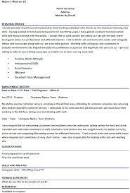 Curriculum Vitae Format Ms Volumetrics Co Curriculum Vitae Brefash  Professional Curriculum Vitae Help U Fresh Essays Pinterest