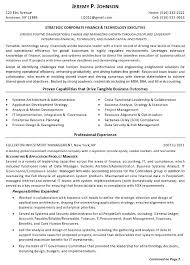 Adorable Resume Sample Finance Tech Executive Page And Stunning Basic Computer Skills For Resume Also First Job Resume Sample In Addition Resume Sales